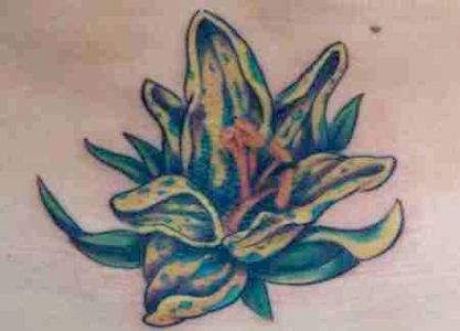 Upper back tribal polynesian plumeria design Source: cross tattoo Jesus