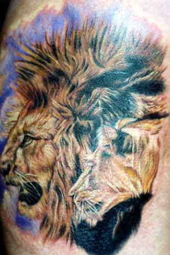 tattoo lion leo